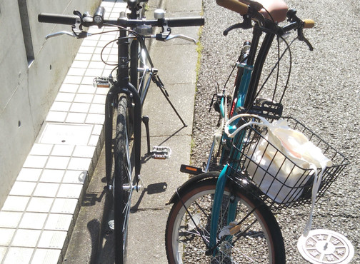 Buying a Bicycle in Japan