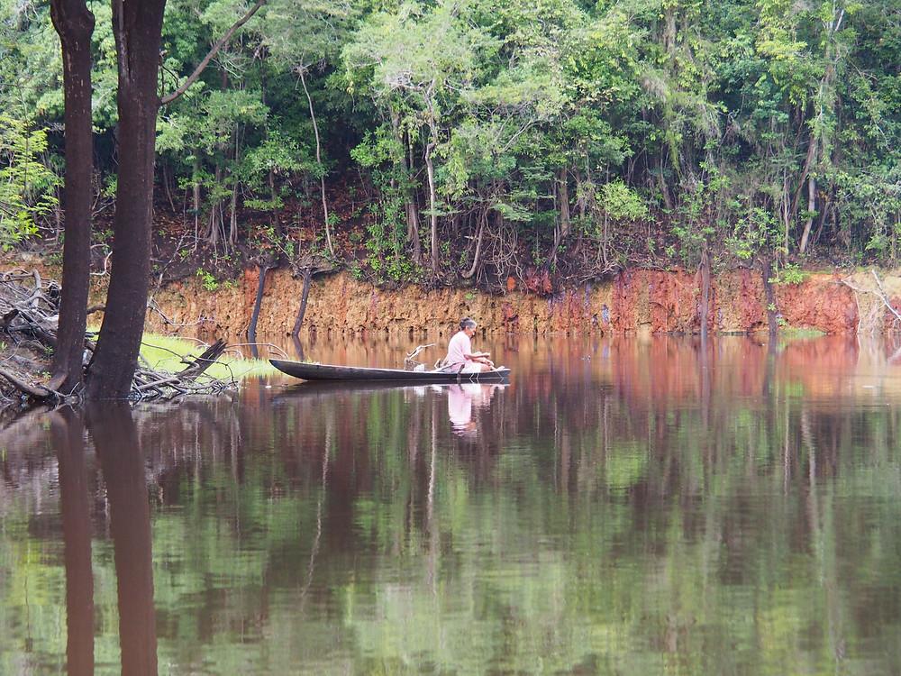 Der Amazonas-Regenwald befindet sich in großer Gefahr – der Parasit Mensch bedroht ihn / Photo: Stephanie Morcinek