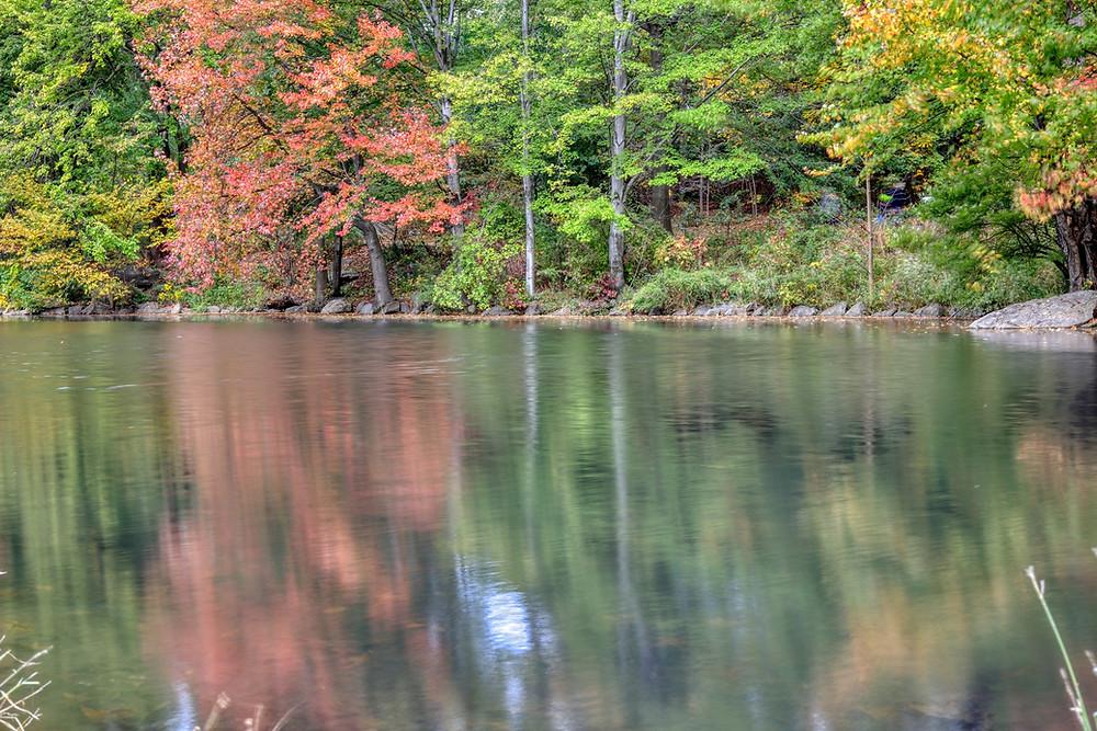 Autumn HDR image
