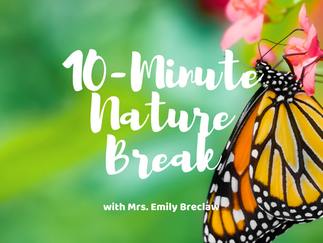 Friday, April 17 - Nature Break