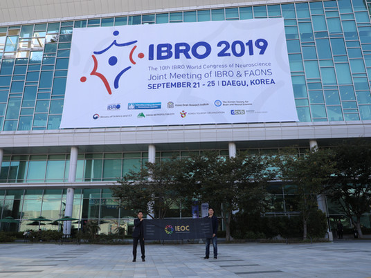 25th Sep. 2019: IEOC at International Brain Research Organization (IBRO) 2019, Daegu, South Korea.
