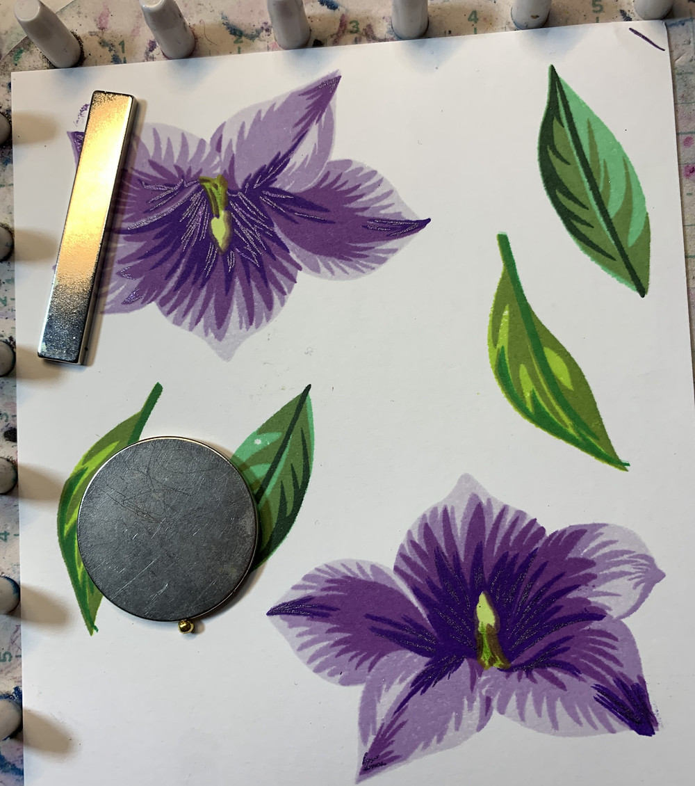 Image is of multiple leaves and two balloon flowers