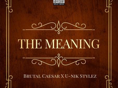"U-Nik Stylez x Brutal Caesar ""The Meaning"" LP"