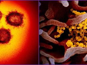 緊急提言!「新型コロナウィルスはインフルエンザより怖くない」は嘘!実は恐ろしい病気です。。。
