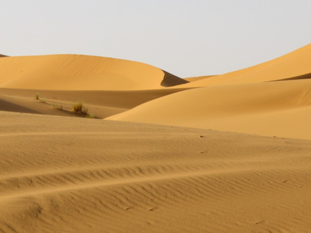 FACTS ABOUT THE SAHARA DESERT