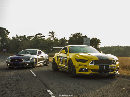 Wide Stangs Out In The Wild