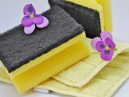 Household DIY: Cleaning and Care from Pets to Plants