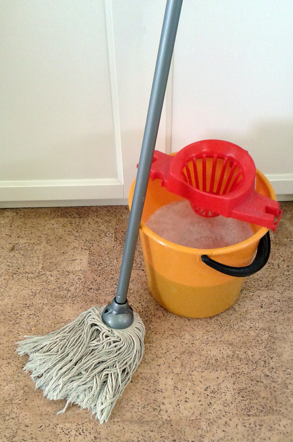 mop and bucket of soapy water