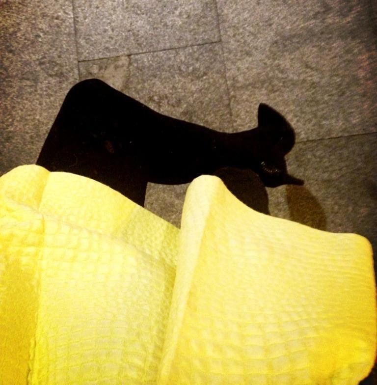 negro amarillo psicologia del color estudio m