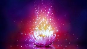 Relationships, Karma, Reflection & Healing