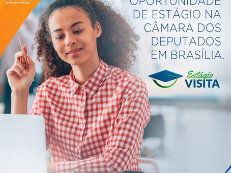 ESTÁGIO NA CÂMARA DOS DEPUTADOS EM BRASÍLIA!