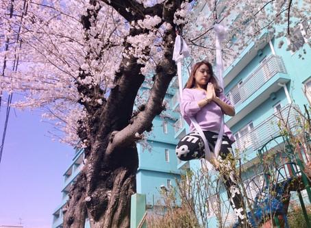 #武蔵小杉の桜が