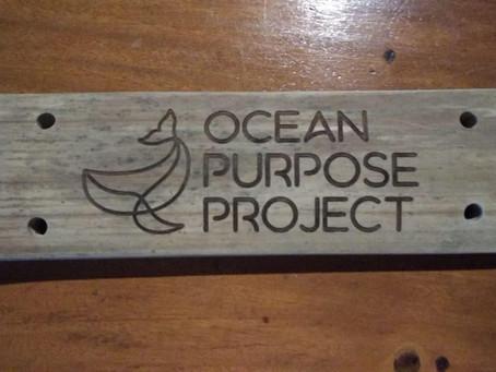 Reforesting Coral in Bali - OPP & LivingSeas