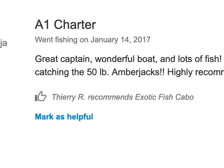 2017 January 14th. Customer's review...
