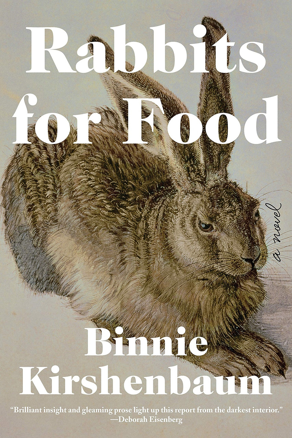 Rabbits for Food by Binnie Kirshenbaum the book slut book reviews thebookslut