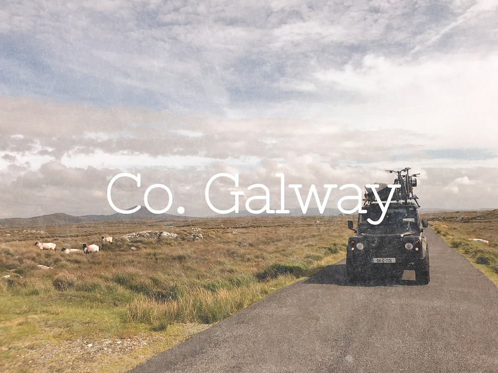Coopers Travels - Dogfatherz Galway