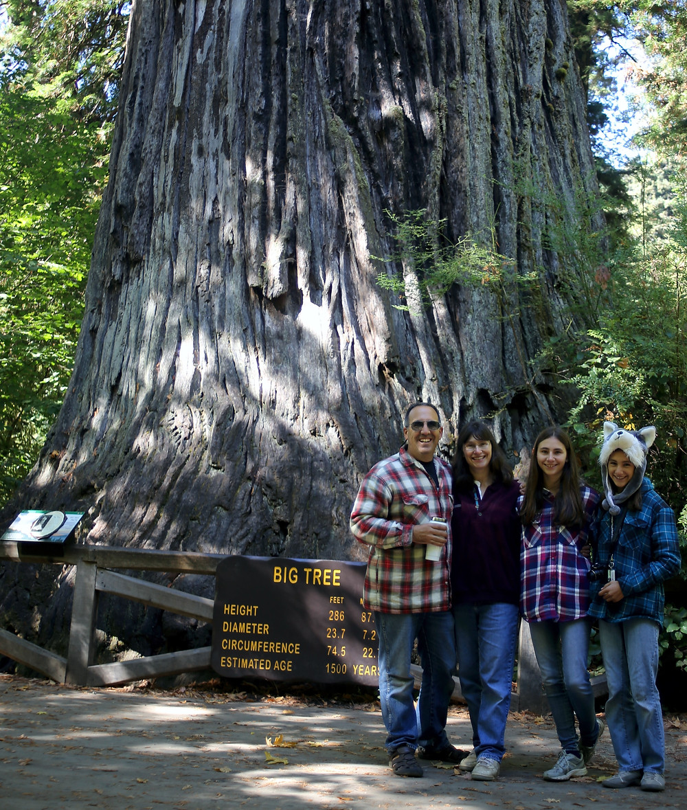 The Reinstedt family at 'Big Tree' in Redwood National Park in Northern California.