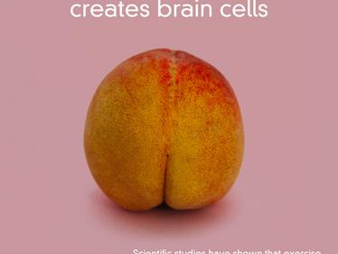 Exercising Your Butt Creates Brain Cells
