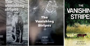 Vanishing Stripes: Who plagiarized the title?