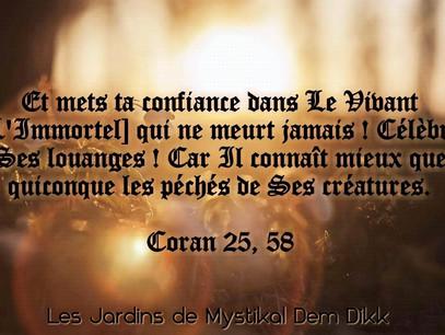 [Le verset du jour] S'en remettre à Dieu.. Coran 25, 58