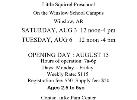 Little Squirrel Preschool now enrolling !