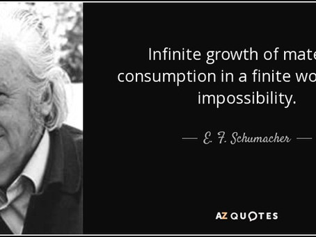 """""""There can be no such thing as infinite growth on a finite planet""""."""