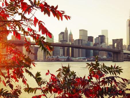 New York City: Autumn in New York
