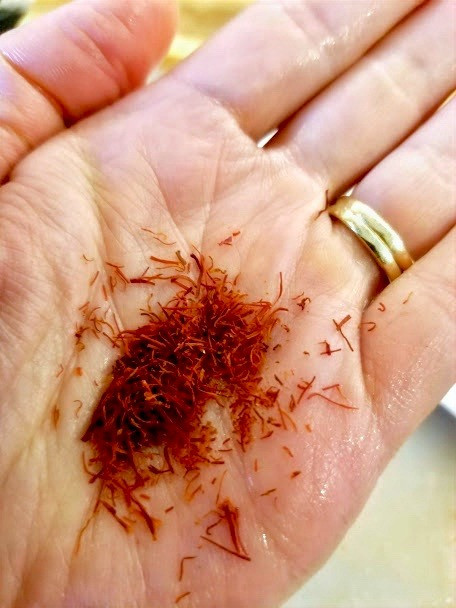 Close-up of dried saffron in the palm of Inna's hand