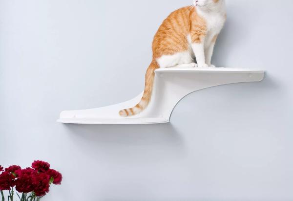 Refined Feline Cat Cloud Cat Shelves - Shelves Strictly Designed for Cats