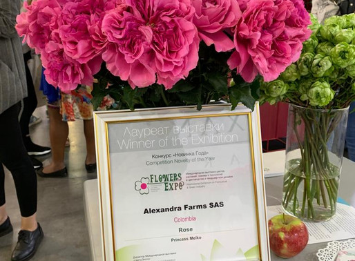 Alexandra Farms Attends FlowersExpo in Moscow, New Japanese Garden Rose Variety Awarded Gold Medal