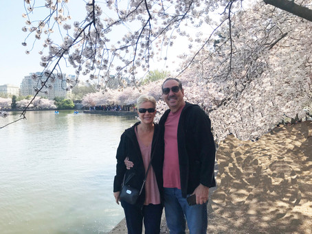 Washington DC Cherry Blossoms Festival