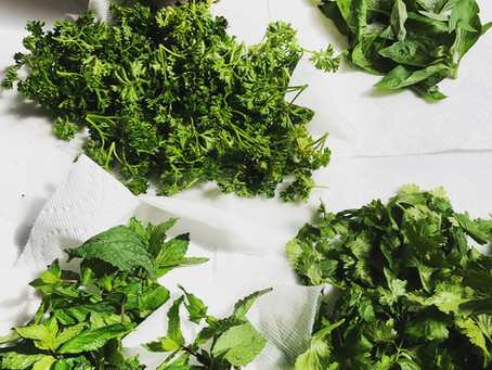 Keeping fresh herbs fresh (and what to do with them)