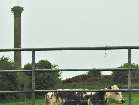 A Corinthian Column in Ireland
