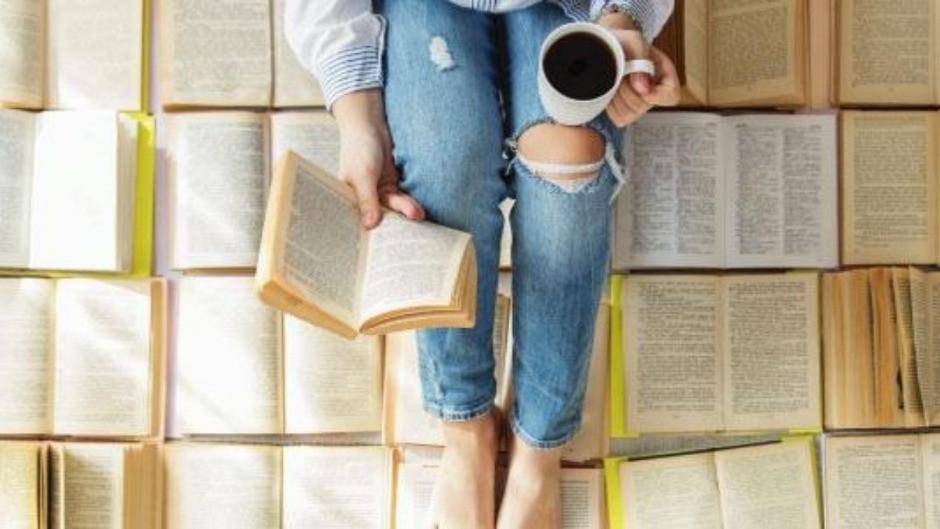livro, gênero literário e escritor