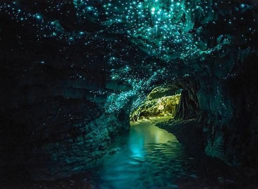 La grotte aux vers luisants de Waitomo en Nouvelle-Zélande