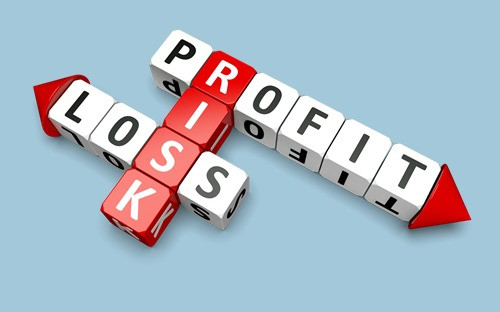 Profit Loss Investment Risk