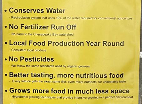 Lettuce Chat 07/19/2020, Why Hydroponics?