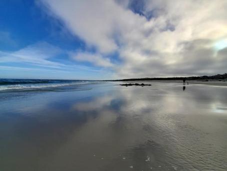 Asilomar Beach Wednesday Morning