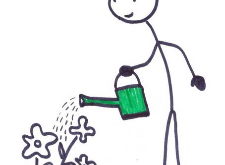 In 3 Schritten zum Ernteerfolg - Gartenarbeit reizarm und einfach