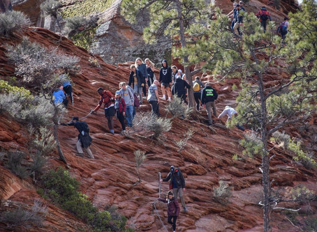 Visitors are rushing to national parks amid employees' concerns about coronavirus