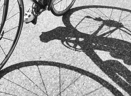 THE CYCLING CONJECTURE
