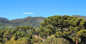 Passeios em Monte Verde-MG