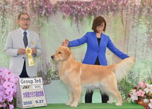 DOG SHOW RESULTS