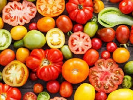 What tomatoes teach us about pain.