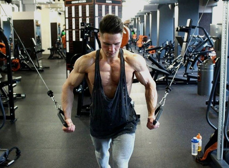 Eiweiß Shakes & Muskelaufbau - Worauf ist zu achten bei Whey Protein Shakes vs Vegan Protein?