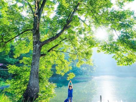 糸魚川で早朝アーシングヨガ