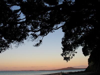 Photography landscapes NZ New Zealand Auckland dusk beach trees Rangitoto