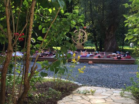 Yoga im Westerwald - ein Ausflug zu Yoga Vidya