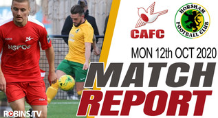 Hornets stung by two own goals