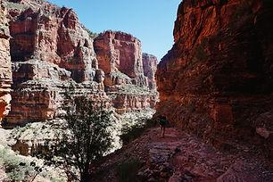 Грэнд Каньон ( Grand Canyon)